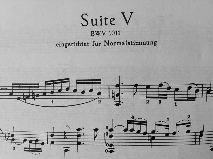 Suite V