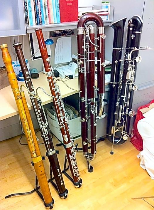 Baroque Bassoon, French Bassoon, German Bassoon, Contrabassoon, Contraforte